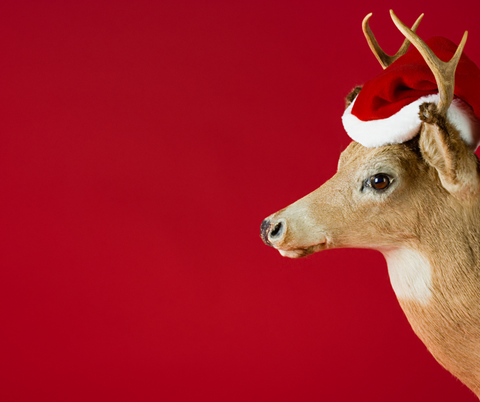 30 of the CUTEST Reindeer Crafts